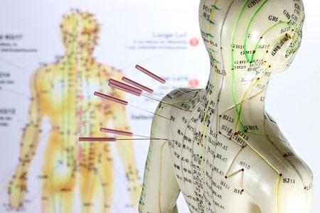 Akupunktur meridianernes forløb